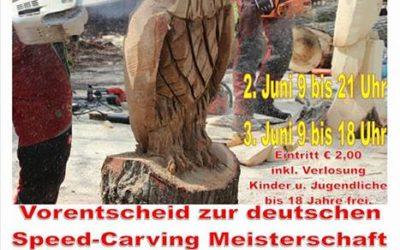 Kettensägen Kunst Event
