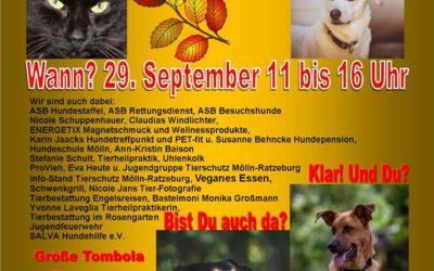 Herbstfest im Tierheim Mölln